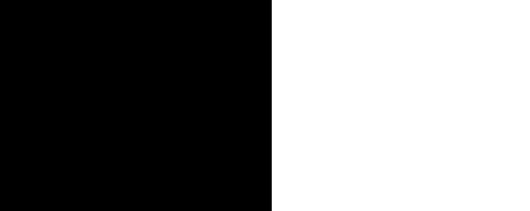 Börni Logo